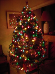 Our Christmas Tree, the night before Christmas eve