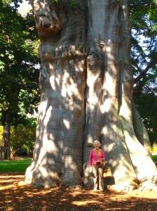 Lani in front of an old Baobob tree