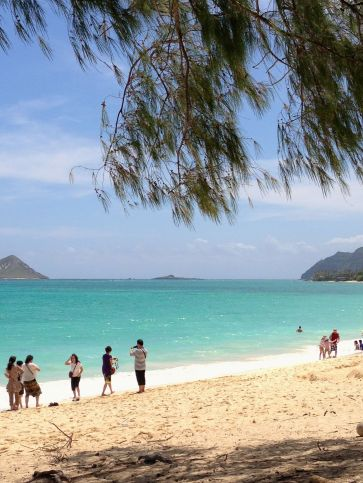 A morning at Waimanalo Beach Park
