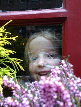 Teeagan peering out of Mr. Dooley's Irish Pub