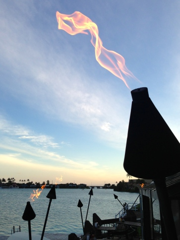 A tiki torch at the Shack, I'm BACK!