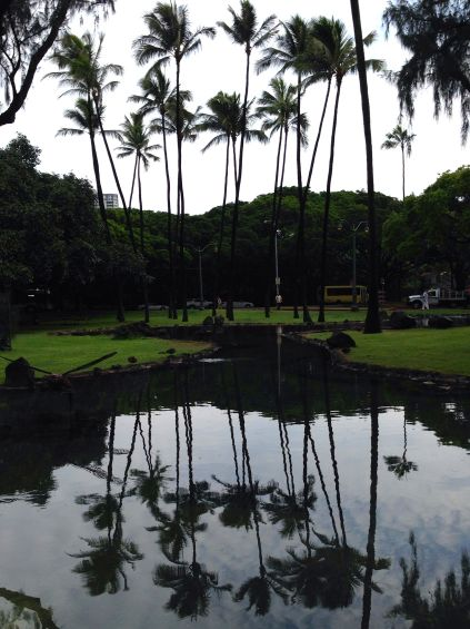 Palms reflected on pool at Kapiolani Park