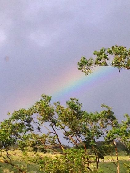 A morning rainbow in our valley