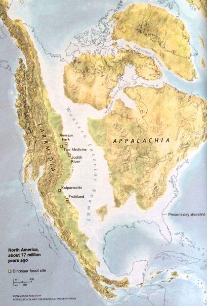 The sea level around North America 77 million years ago