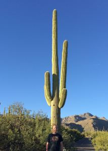 a saguaro with my grandson Ian down below