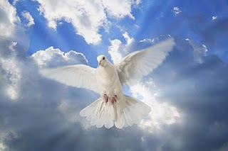 An image of the Ho;y Spirit as a dove from http://www.magnificat-ministry.net/prayer-treasury/holy-spirit-prayer/
