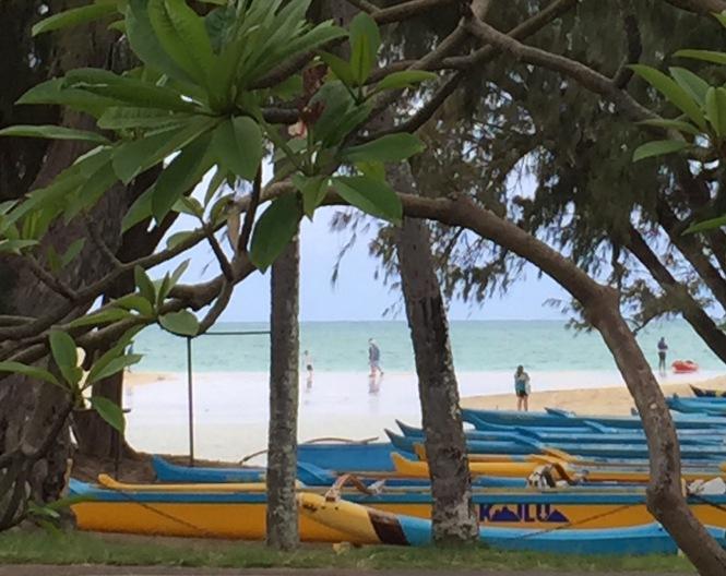 Kailua beach as seen from Buzzes